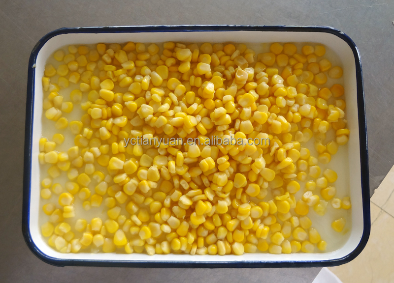 Export Canned Sweet Yellow Corn 340gx24tin