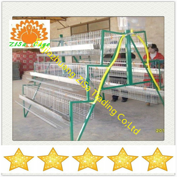 ladder type galvanized full automatic chicken cages