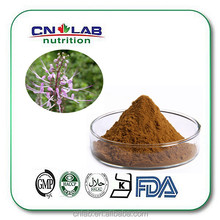 Hot sale Cat's Claw leaves extract powder
