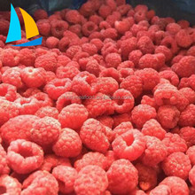 Frozen berry IQF frozen food Frozen Fruit frozen Raspberry