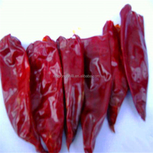 Chinese spicy red hot chilli pepper
