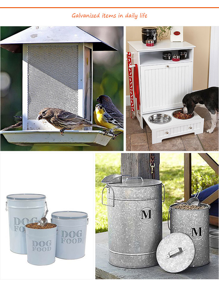 Large Deluxe metal free pet birds Feeder