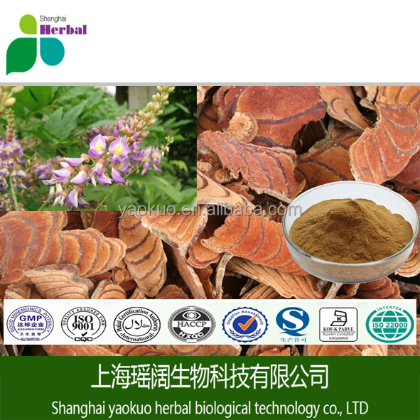 Factory supply Chasteberry Extract / Chaste Tree Berry Extract / Vitex agnus-castus.