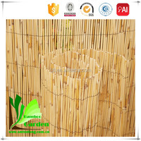 High Quality Roll Top Rolled Reed Fence