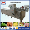 Hot sale factory price advanced design vegetable and fruit blanching machine