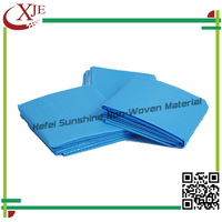 Disposable Bed Sheet Roll/Medical/Hygiene/Hospital Disposable Consumable