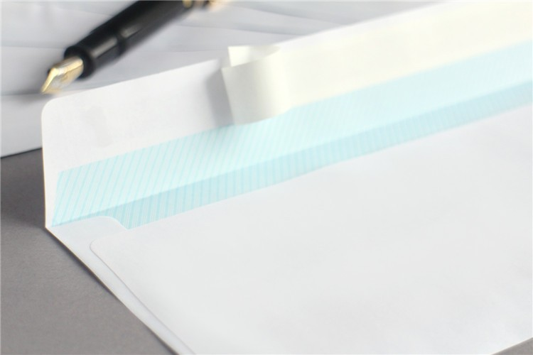 Double window Business Envelope, Security Envelope and privacy tinted envelopes
