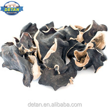 Detan Dried White Back Agaric/Black Fungus Magic Mushrooms Dried for Sale