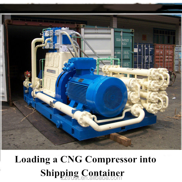 hottest D type oil free Natural gas compressor cng compressor chinese compressor for industry