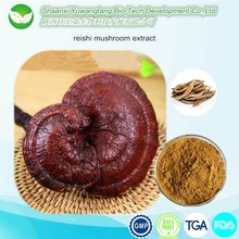Health food ganoderma lucidum extract