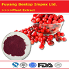 Man Yue Ju top grade best selling gmp manufacturer cranberry extract powder