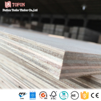 5X9 Sized Flat Surface Hardwood Plywood