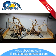 Fashionable driftwood mangrove for aquarium