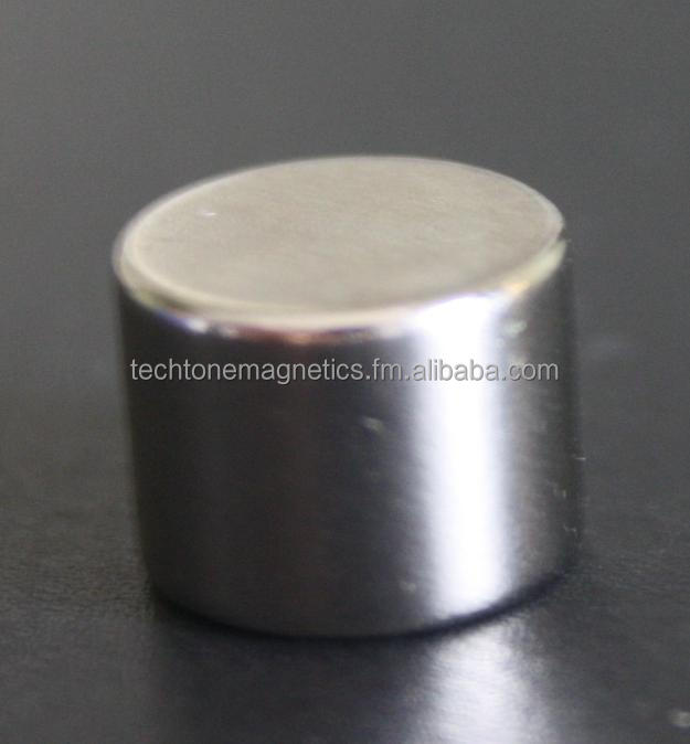 Rare Earth Magnet 13 X 10mm