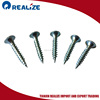 Hot Selling China Screw Manufacturer Security