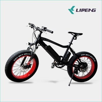 20inch fat trye eBike 36v 350w cheap electric bike with competitive price