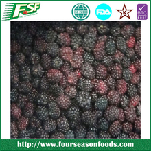IQF/Frozen fresh Blackberry 2015 wholesale price