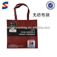 Pp Non-Woven Wine Bags Transparent Wine Bag