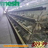 Wholesale chinese mesh slippers 120 cheap pigeons cages with CE certificate