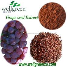 China Water Soluble Proanthocyanidins 95%/OPC/ Organic Grape Seed Extract