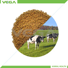Poultry Feed Rumen-Protected Lysine 30%, Microcapsule Poultry Feed Rumen-Protected Lysine 30%