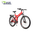 36V lithium battery fold aluminum alloy electric bike 26 inch E bike