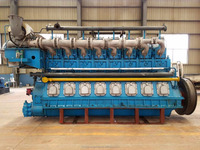 NG Generator Set/ natural gas generator price