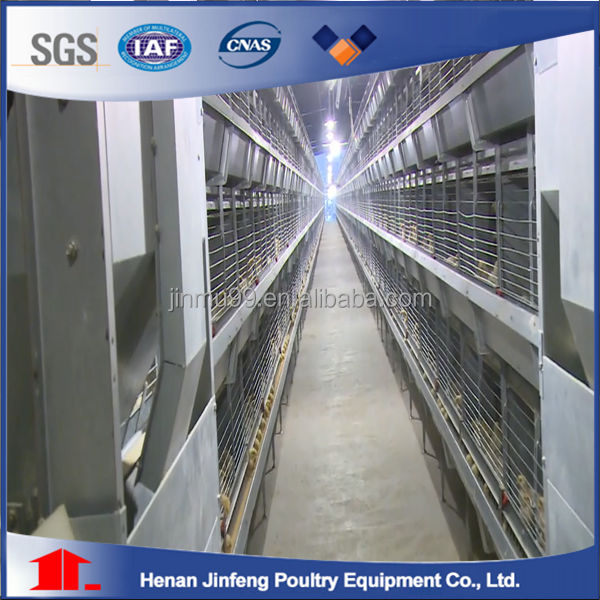 automated battery cage for birds/ poultry farm cage for Nigeria