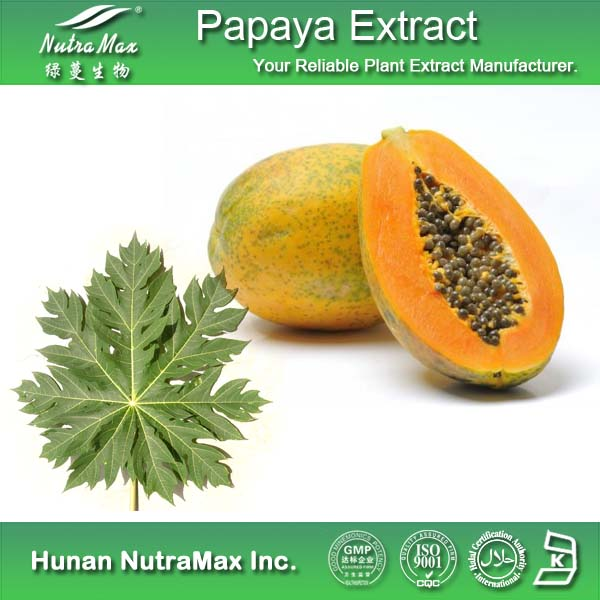 Medical Grade Pawpaw Extract Papain Enzyme Powder/Low Price Papain