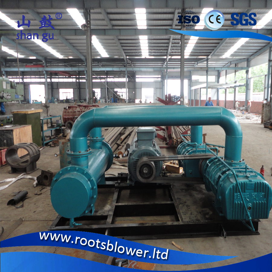 Fertilizer factories aertion STP blower