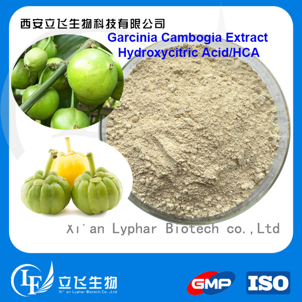 Good Performance for Weight Loss Raw Material Garcinia Cambogia Extract