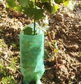 Profitable glass fiber vineyard stake ,fiberglass grape stake for Grape nursery