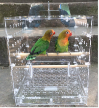 Wholesale acrylic bird breeding decorative parrot bird cage