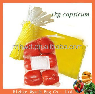 new small nylon pe Mesh net packing Bag with brand for 1kg capsicum