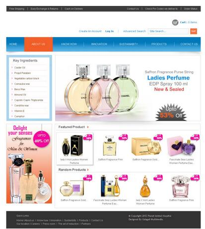 Online Shopping website templates for Cosmetic, Web Design