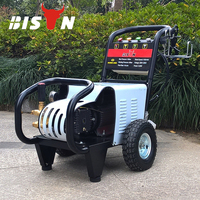 BISON China Steam Pressure Washer With Strong Power Engine