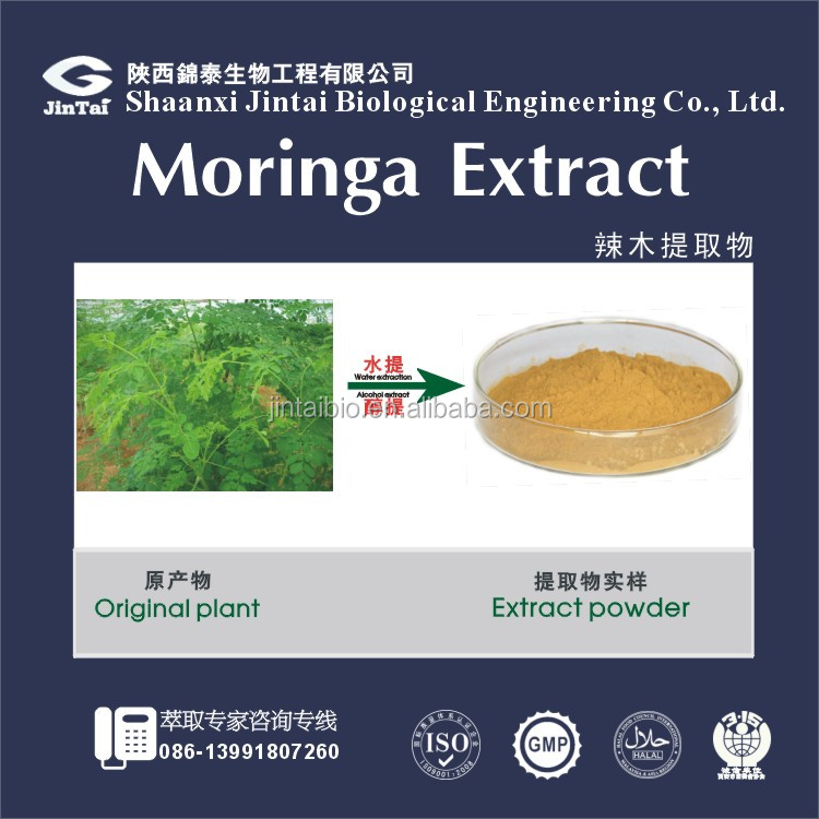 100% pure natural bulk moringa seed extract