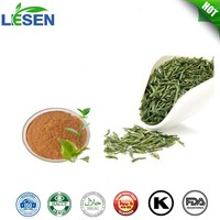 Natural Organic Green Tea Extract Powder Polyphenols 95%~98% EGCG 40%~98%