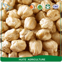Big size Kabuli chickpeas from China