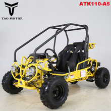 Tao Motor Petrol Cheap Racing Go Kart for sale Electric Start ATK110-A5
