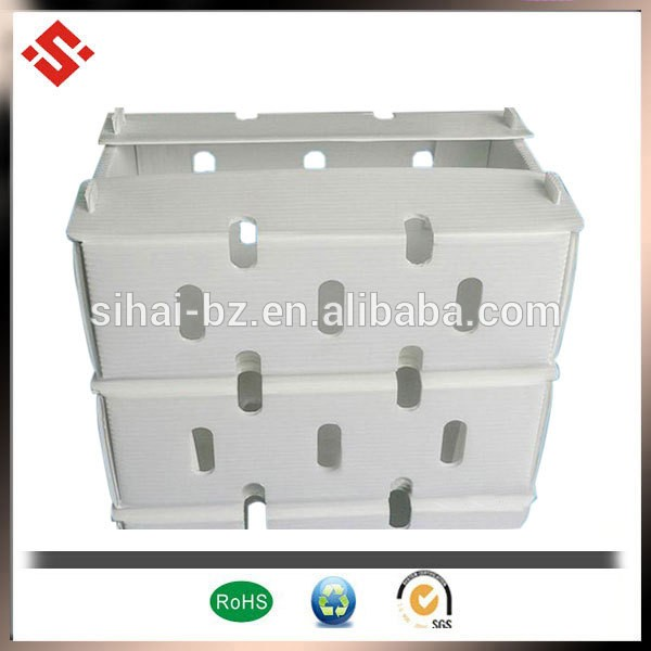 pp corrugated dry fruit plastic box packaging fruit box fruit boxes for shipping
