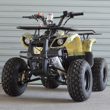 high quality 50cc,70cc,90cc,110cc atv quad 125cc wireless