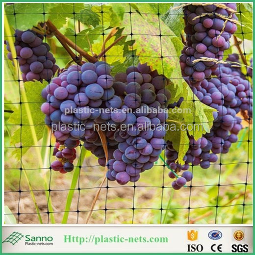 High quality BOP bird netting for wineyard