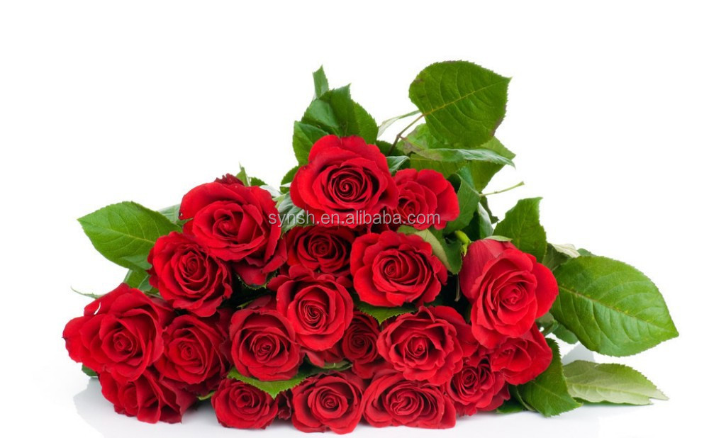 Hot!!High Quality Rose Petal Extract