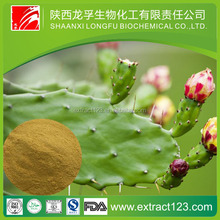 China Manufacturer Nopal Cactus Juice powder Prickly Pears Extract Prickly Pears P.E. 10:1