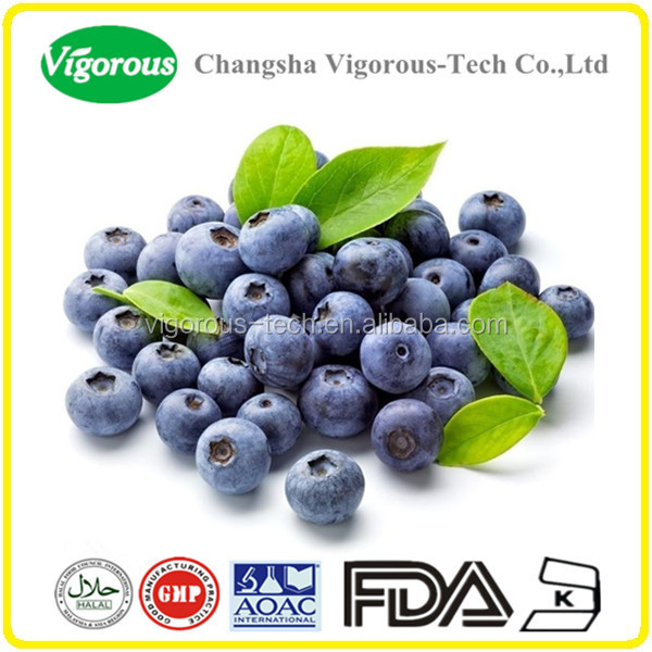 Factory provide natural bilberry extract/bilberry fruit extract powder/bilberry powder extract