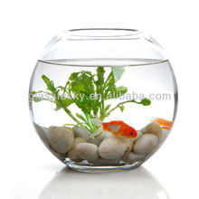 Clear glass fish tank for sale
