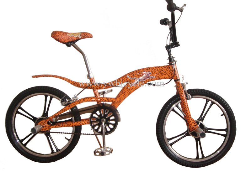 "20"" steel freestyle bike(WL-F20003)"