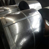 Prepainted Galvanized Coil Rolls/Hot Dipped Galvanised Steel Sheet in Coil China Factory Supply