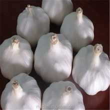 Chinese red garlic price, natural dried garlic red new crop